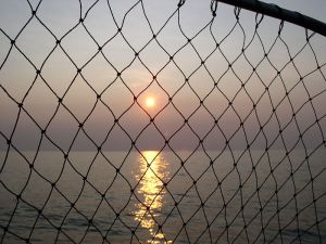 800px-Lake_Erie_Sunset_with_fish_net